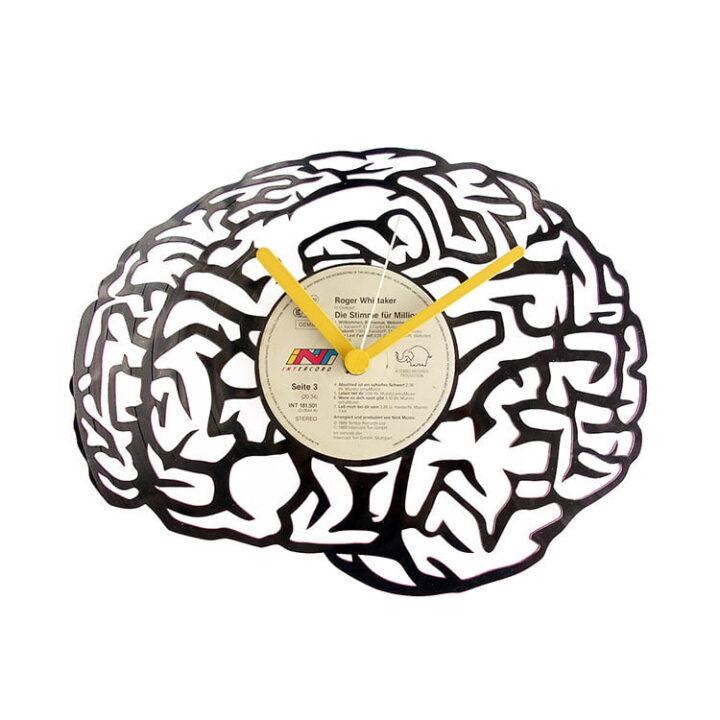 Creier, encefal