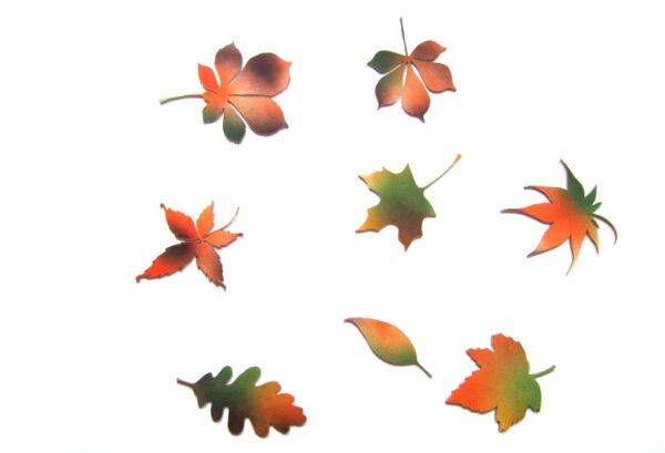 decor frunze perete toamna