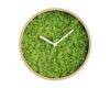 Evergreen inchis culoare