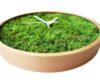 ceas licheni verzi