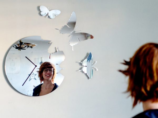 oglinda fluturi