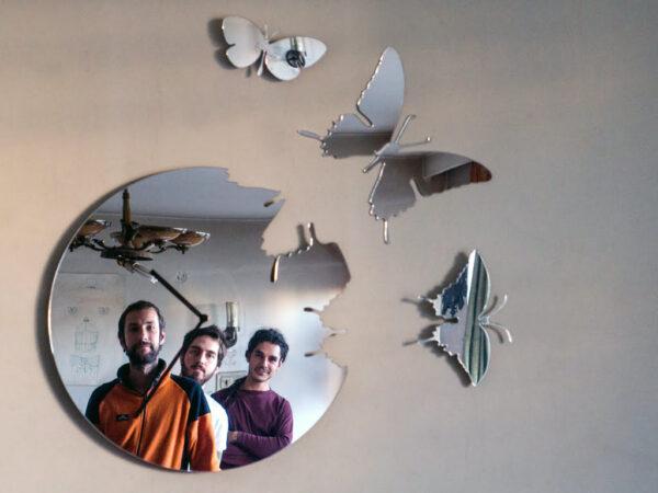 oglinda fluturi reflexie