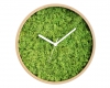 ceas-perete-natura
